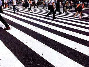 信号機のない横断歩道のルール(本社)