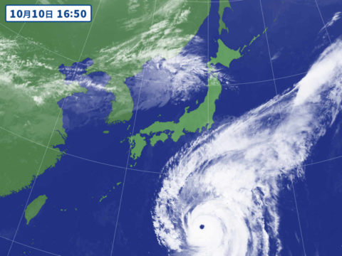 今週末は台風の…